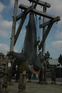 05_jaws